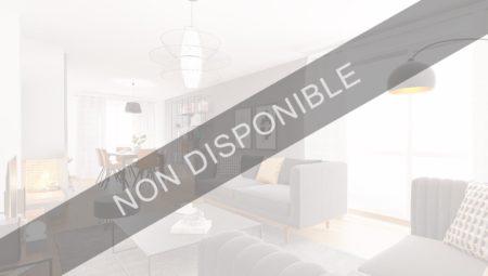 BANDEA-NON-DISPO1